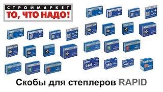 Скобы для степлеров RAPID - купить скобы для степлера RAPID, купить степлер RAPID