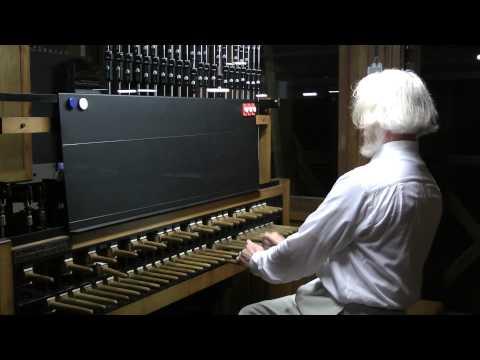 Бурлаки на Волге-Barge Haulers on the Volga (anon.) by Jo Haazen on the Carillon.mp4