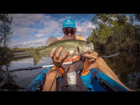 Kayak Fishing Cape Coral Canals For Large Mouth Bass - Episode 2