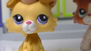 ♥ LPS Troublemaker - Episode 10 (Confessions) ♥