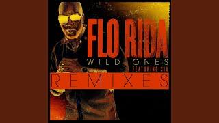 Wild Ones (feat. Sia) (Guy Scheiman Vocal Remix)