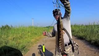 Ловля змееголова в малых озерах Узбекистана / Uzbekistan small lakes