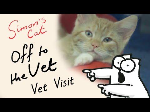 Simon's Cat in 'Off to the Vet' - Vet Visit