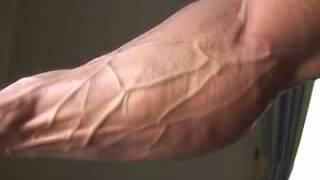 Bodybuilder Wong Hong poses forearms, bis