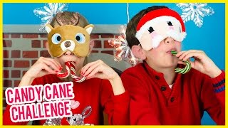 GIANT CANDY CANE CHALLENGE AND TASTE TEST! CHRISTMAS CANDY CANE TASTING BY PLP TV