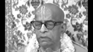 My Wife, Children & Society are My soldiers. If I am in Danger, They Will Help Me - Prabhupada 1027