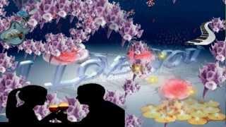 Bist du einsam heut Nacht - Instrumental.mpg