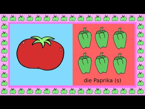 Deutsch Lernen Plural Und Singular Apprendre Lallemand