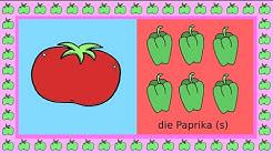 Deutsch lernen: Plural und Singular / apprendre l'allemand: singulier et pluriel