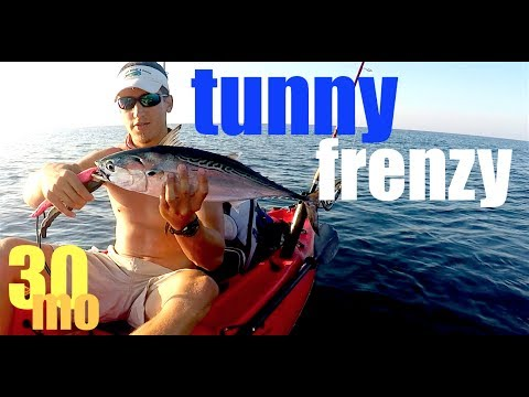 Catching Little Tunny offshore kayak fishing Ft. Pickens - Pensacola Florida