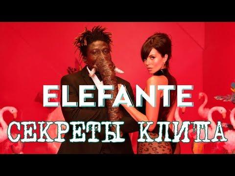 NK - ELEFANTE / Секреты клипа