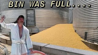 It's raining corn!!