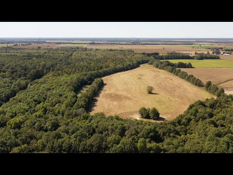 320 Acre Arkansas Farm And Hunting Land For Sale