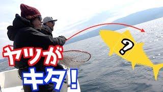 海釣り初心者の我々でも楽しめるMを狙うゲーム。楽しすぎた。 動画でヒットしたカラー⬇︎ https://amzn.to/2TVckWw メジャークラフト:ジャイアントキリング⬇︎ ...