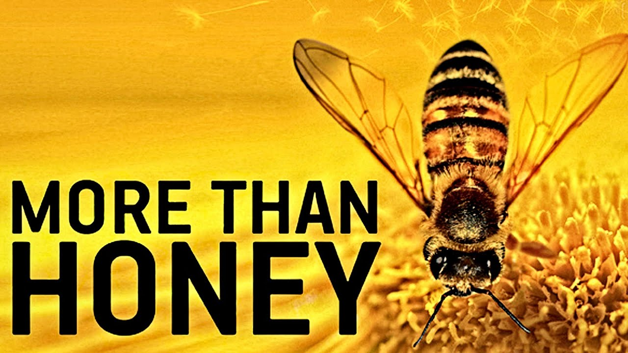 More than honey trailer german deutsch hd 2012 youtube for More com