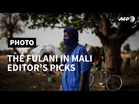 PART II - The Fulani in Mali: in pictures I AFP [8 November 2019]