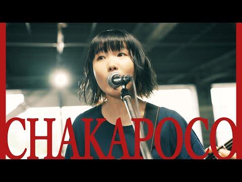 ネクライトーキーMV「誰が為にCHAKAPOCOは鳴る」/ NECRY TALKIE - CHAKAPOCO