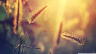 DJ Noor & Stefan Addo - Distances (Harri Agnel Remix)