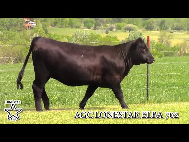 AGC Lonestar Elba 702