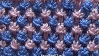 Repeat youtube video Two Color Star Stitch