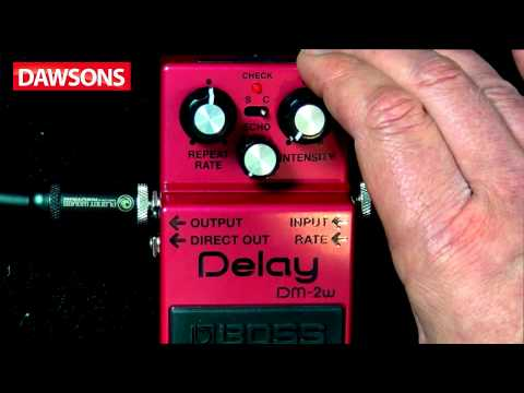 BOSS DM-2W Waza Craft Delay Pedal Review