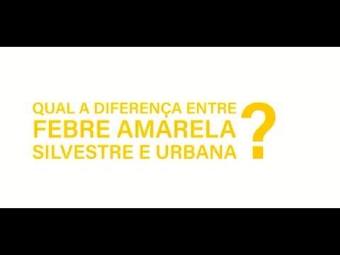 Qual a diferença entre febre amarela silvestre e febre amarela urbana?