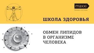 """Лекция """"Обмен липидов в организме человека"""""""