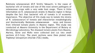 Isolation and Characterisation of Ralstonia Solanacearum Strains of Tomato Wilt Disease from Maseno,