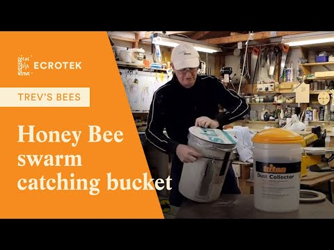 Trevs Bees - Honey Warmer / Fridge Cabinet