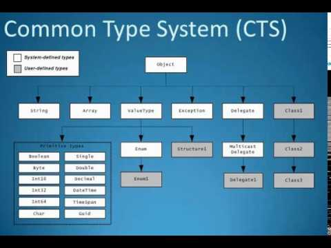 Common Type System in .Net
