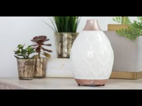 How To & Review of : Young Living's  || Desert Mist Diffuser