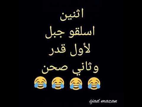 نكات عراقيه جميله من نكتهبربع