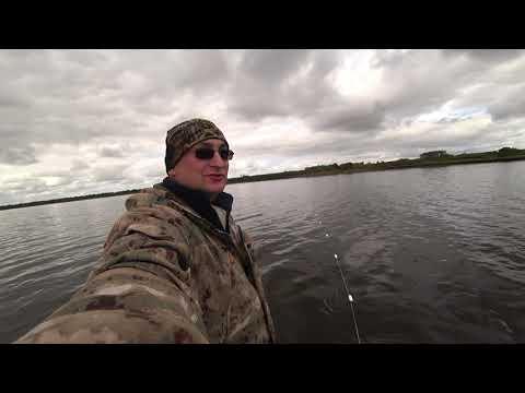 РЫБАЛКА СЕТЯМИ НА СЕВЕРЕ / ВЫЛОВ СИГА / FISHING WITH NETS /  Salmon fishing