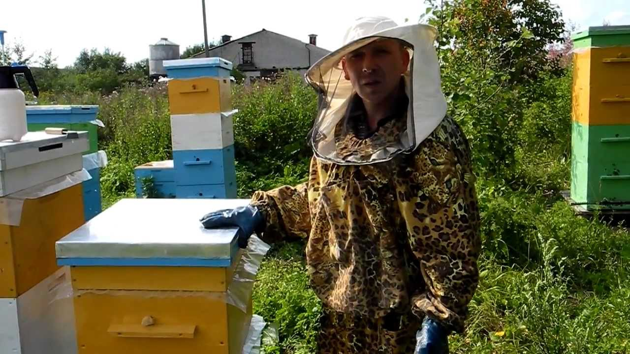 Пчеловодство своими руками видео фото 360