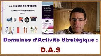 D.A.S. Domaine d'activité stratégique - explication et exemples