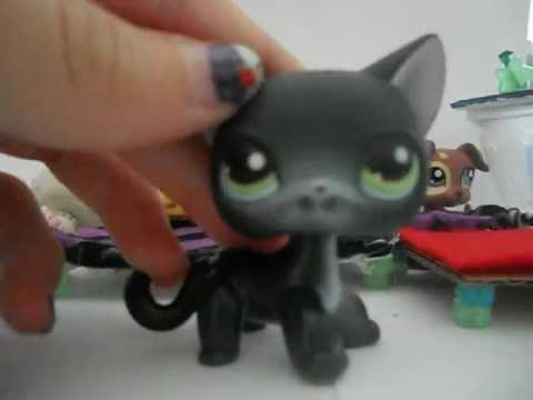 My LPS Store! *Trade and Sell* (Open forever!)