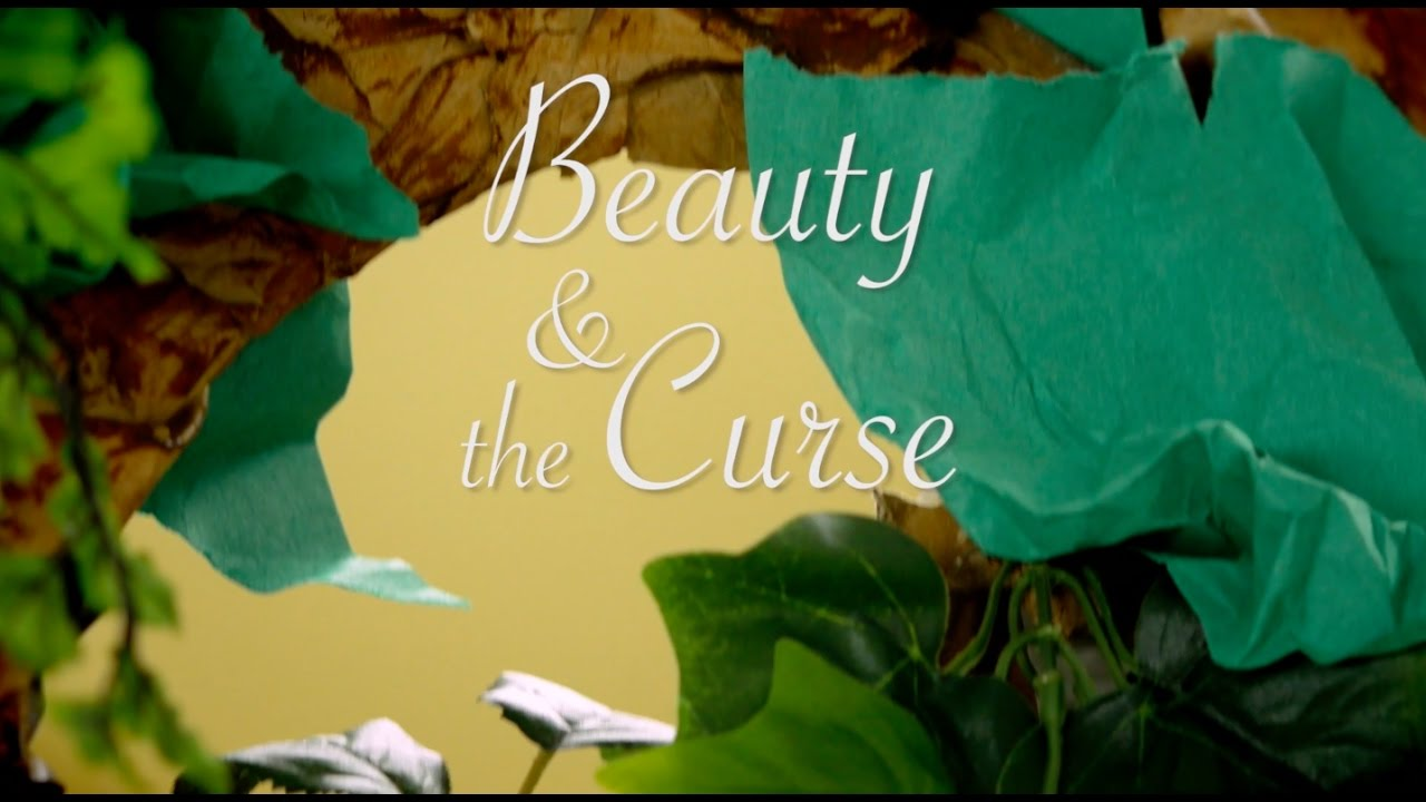 Beauty And The Curse From Beyond The Castle Stories Inspired By