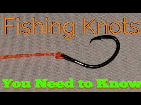 3 Fishing knots for Beginners-Best Fishing knots for catching catfish