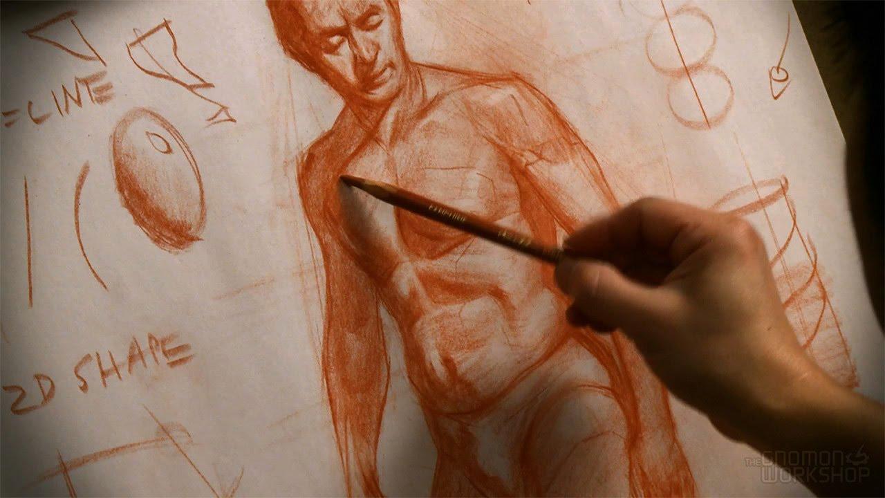 Schön Die Gnomon Workshop Anatomie Werkstatt Galerie - Anatomie Von ...