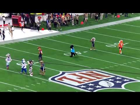 NFL Pro Bowl 2015-Pre Game Entertaintment Team Mascots & Cheerleaders