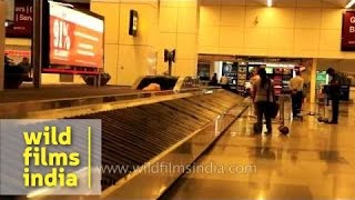 Baggage claim conveyor belt at arrivals, T3 IGI Airport, Delhi