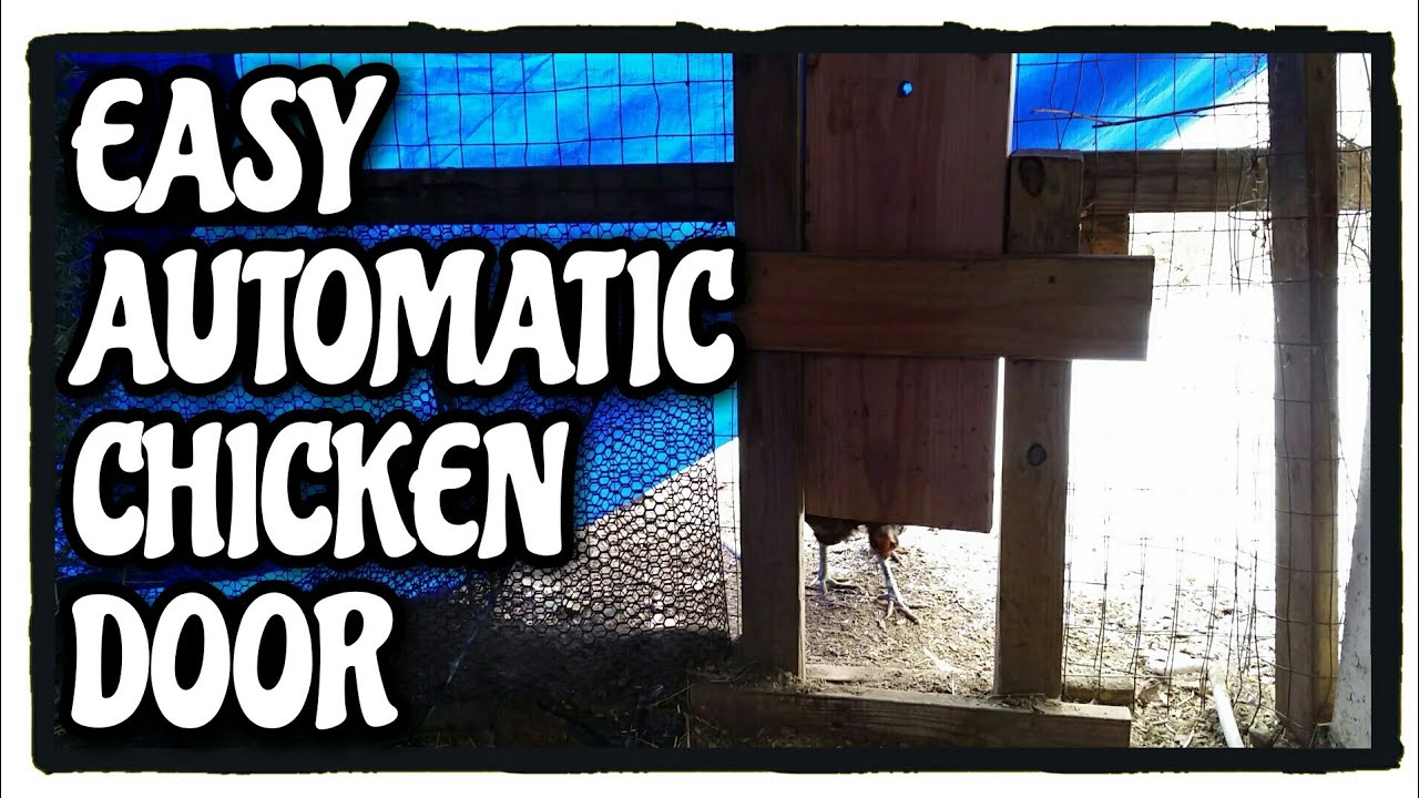 Easy Automatic Chicken Door Diy Coop Door Timer