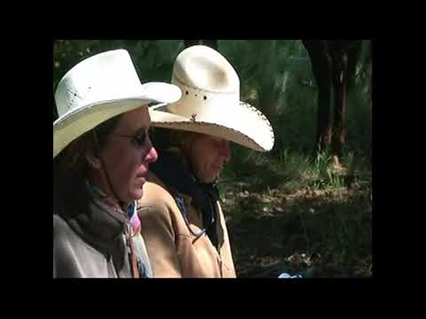 Send A Mule Mail From The Havasupais - Missouri Fox Trotters
