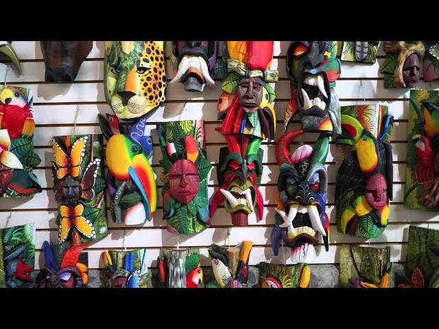 Fulton Science Academy Private School Video Contest Entry - Costa Rica by Edgar Robitaille