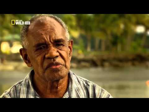 Nat Geo Wild Islands Fiji HD Nature History Documentary