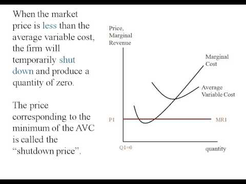 Econ - Perfect Competition - Short Run Supply Curve