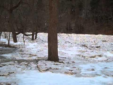 Ice jam on pine creek lycoming county PA 5