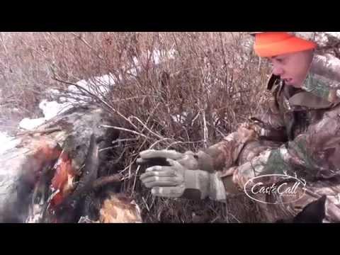 Show #12 Colorado Elk Hunt