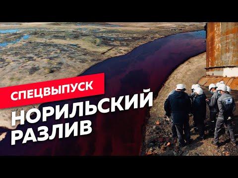 Кто виноват в экологической катастрофе в Заполярье? / Редакция