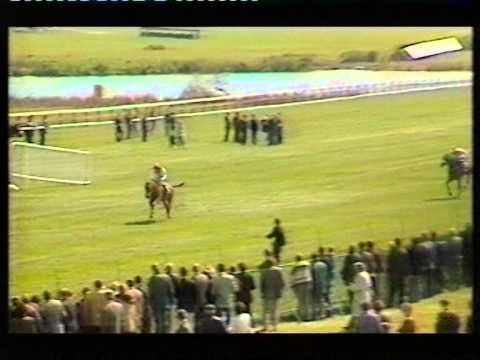 1995 Coleman Tunnelling Handicap Chase